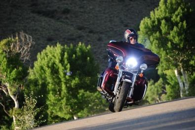 Harley-Davidson greenies