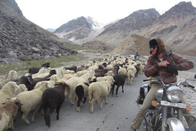 Discounts on India Travelz motorcycle tours