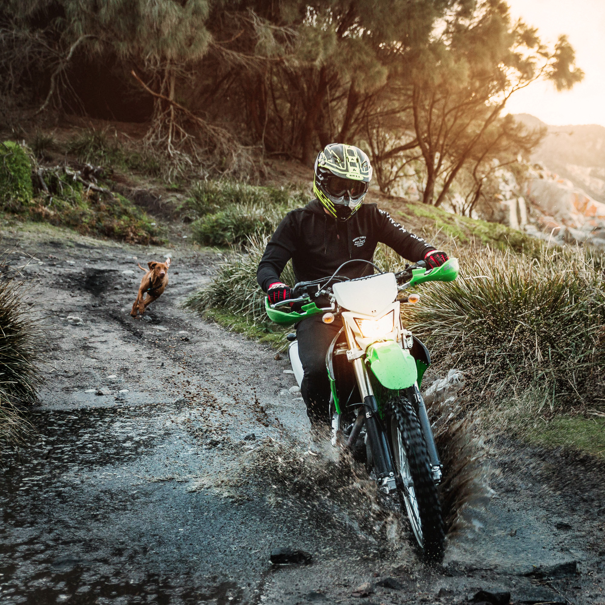 An off-road motorcycle rider in Australia blasts through a puddle as a dog follows along behind